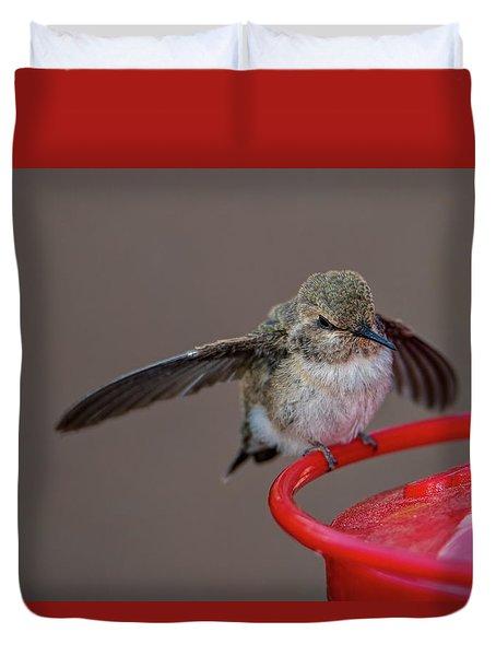 Hummingbird First Flight Duvet Cover