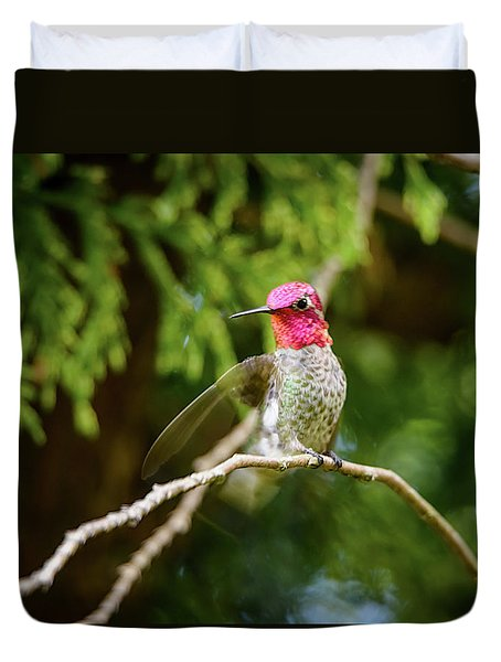 Hummingbird Gorget Duvet Cover
