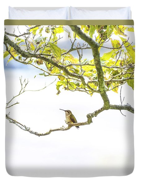 Hummingbird I Square Duvet Cover