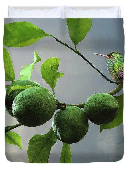Hummingbird In Lime Tree Duvet Cover