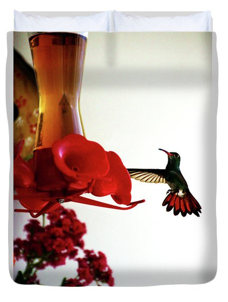 Hummingbird In Tulua, Colombia Duvet Cover