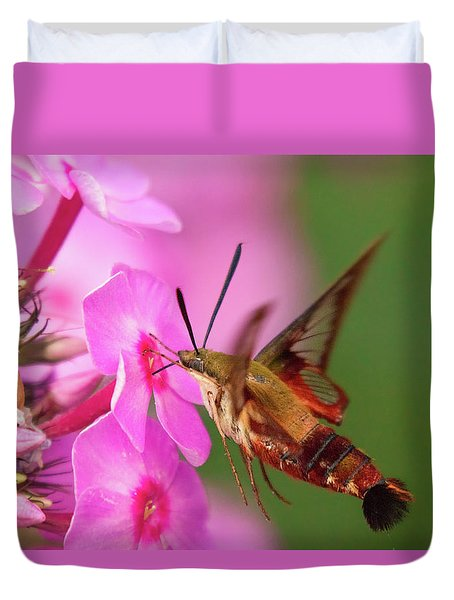Hummingbird Moth Feeding 1 Duvet Cover