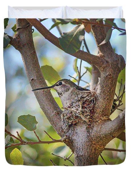 Duvet Cover featuring the photograph Hummingbird - Nesting by Nikolyn McDonald