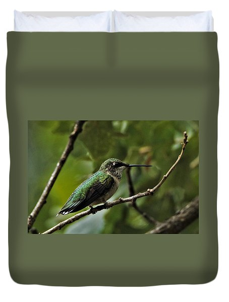 Hummingbird On Branch Duvet Cover