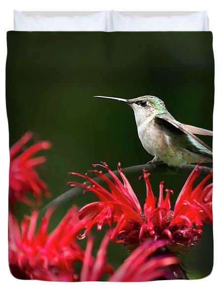 Hummingbird On Flowers Duvet Cover