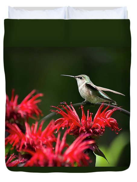 Duvet Cover featuring the photograph Hummingbird On Flowers by Christina Rollo