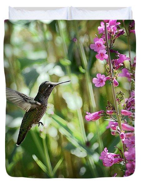 Hummingbird On Perry's Penstemon Duvet Cover by Saija  Lehtonen