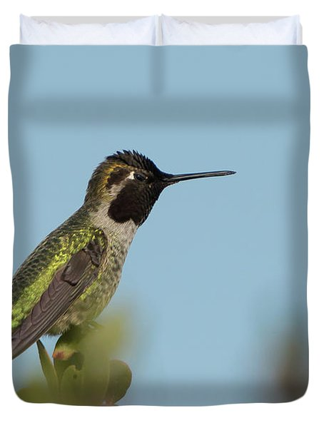 Hummingbird On Watch Duvet Cover