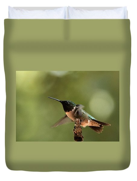 Hummingbird Take-off Duvet Cover by Sheila Brown