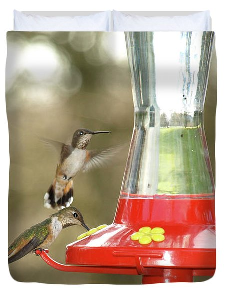 Hummingbird Trio Duvet Cover