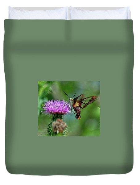 Hummingbirdbird Moth Dining Duvet Cover