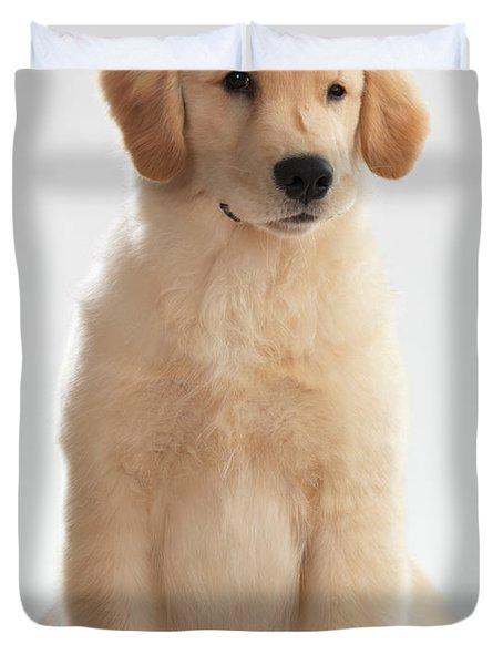 Humorous Photo Of Golden Retriever Puppy Duvet Cover by Oleksiy Maksymenko