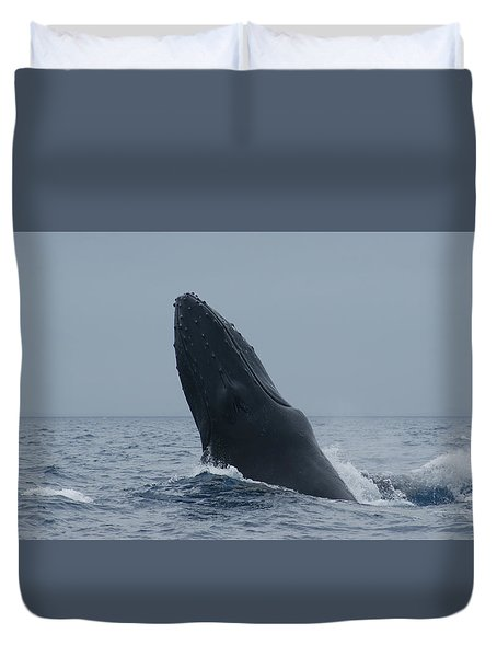 Humpback Whale Breaching Duvet Cover by Gary Crockett