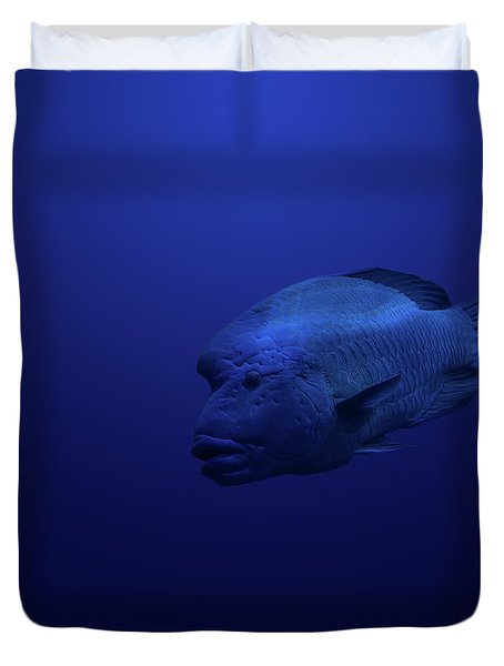 Humphead Duvet Cover