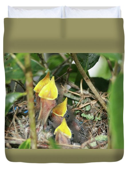 Duvet Cover featuring the photograph Hungry Baby Birds by Jerry Battle