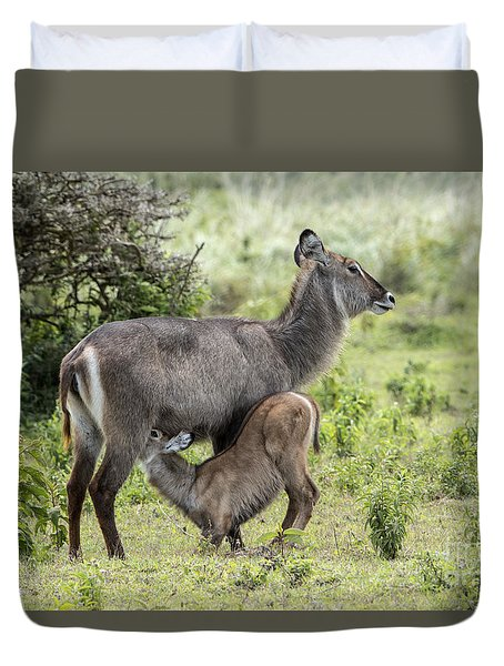 Duvet Cover featuring the photograph Hungry Baby by Pravine Chester