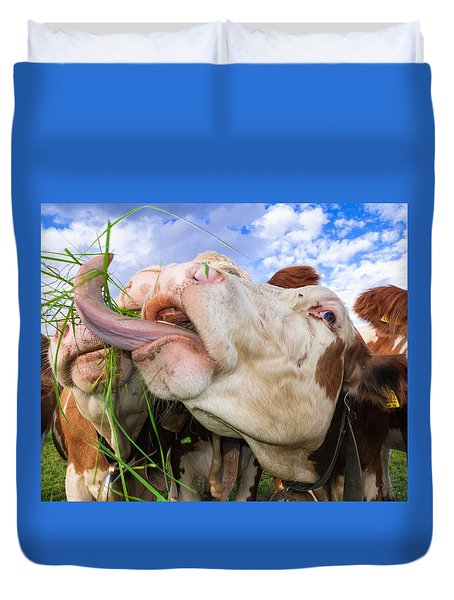 Hungry Cow Eating Grass Funny Picture Duvet Cover