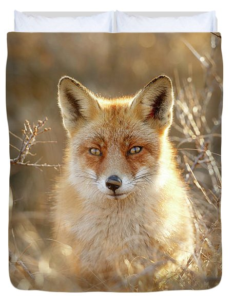 Hungry Eyes - Red Fox In The Bushes Duvet Cover
