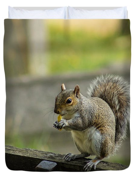 Hungry Squirrel Duvet Cover