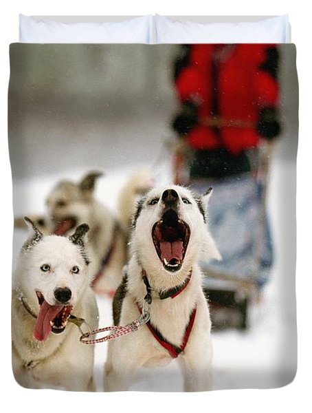 Husky Dog Racing Duvet Cover by Axiom Photographic