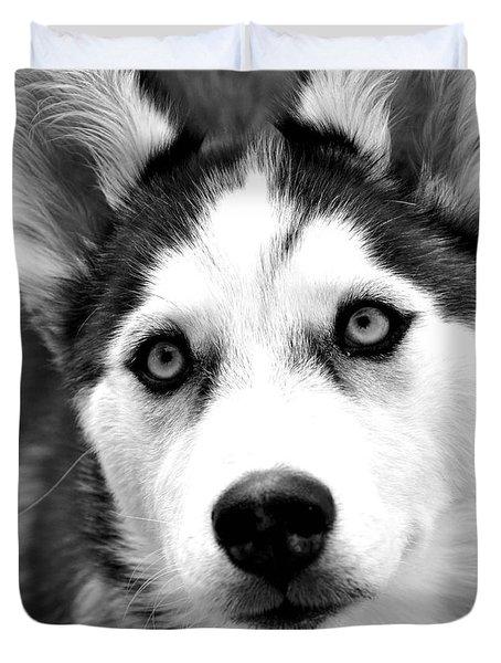 Husky Pup Duvet Cover