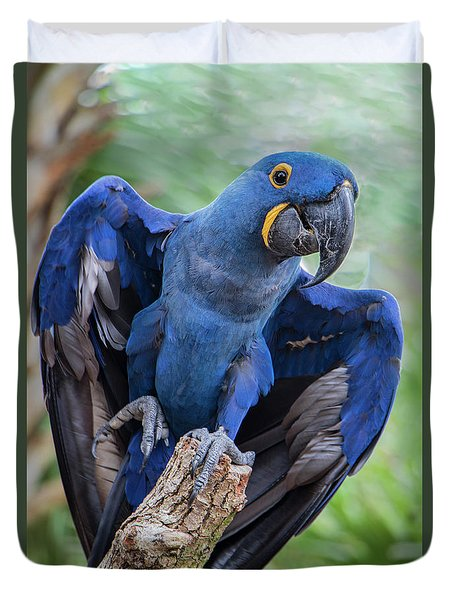 Hyacinth Macaw Duvet Cover