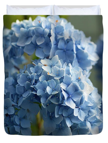 Duvet Cover featuring the photograph Hydrangea Sunrise by Mary Jo Allen