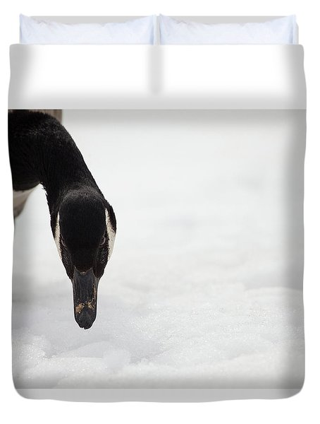 Duvet Cover featuring the photograph I Do See You by Karol Livote