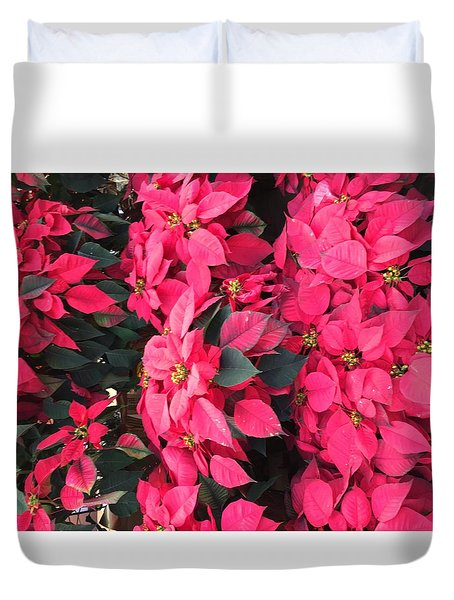 I Love Poinsettias Duvet Cover by Kay Gilley