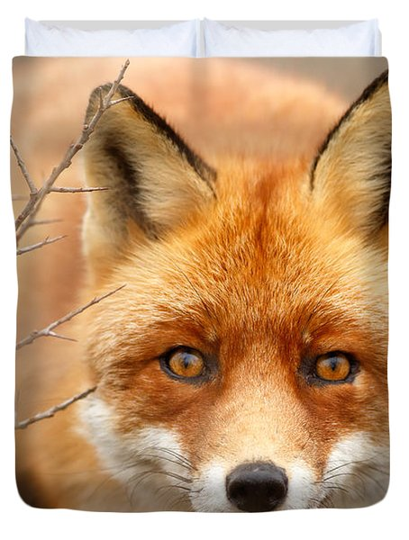 I See You - Red Fox Spotting Me Duvet Cover