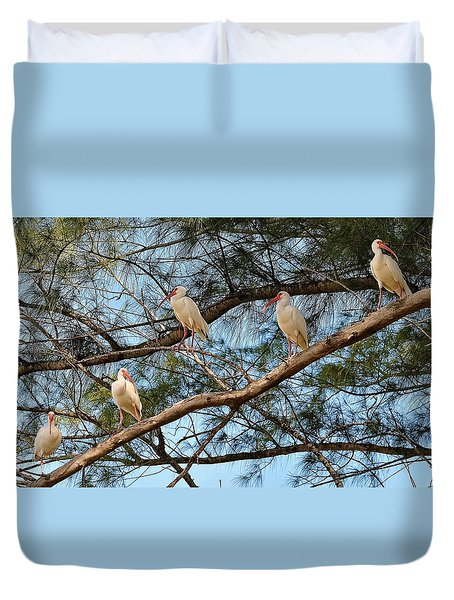 Ibis I May, Ibis I Might... Duvet Cover