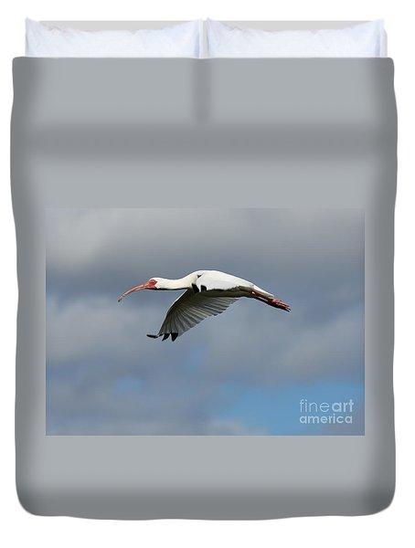 Ibis In Flight Duvet Cover by Carol Groenen