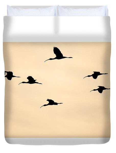 Duvet Cover featuring the photograph Ibis In The Skies by Ruth Jolly