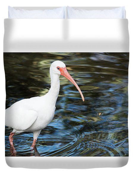 Ibis In The Swamp Duvet Cover by Kenneth Albin