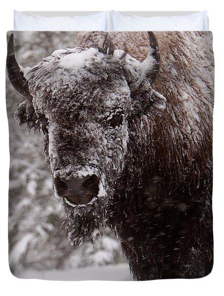 Ice Cold Winter Buffalo Duvet Cover