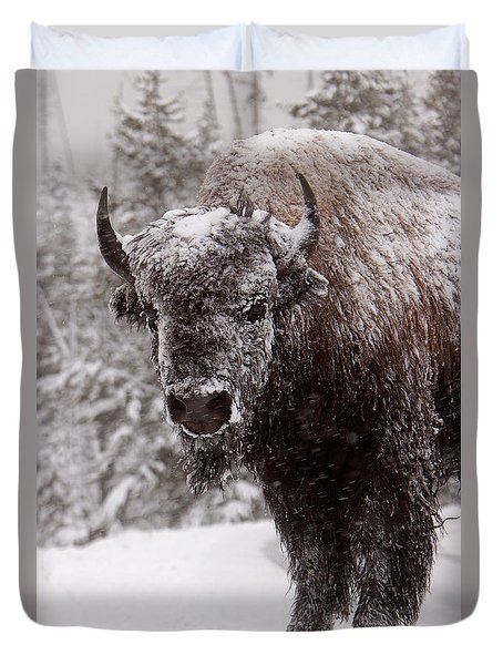 Ice Cold Winter Buffalo Duvet Cover