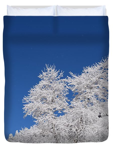 Ice Crystals Ute Pass Cos Co Duvet Cover