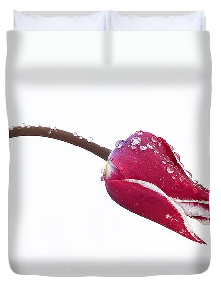 Ice Drops On Tulip Duvet Cover