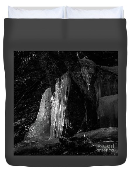 Duvet Cover featuring the photograph Icicle Of The Forest by Tatsuya Atarashi