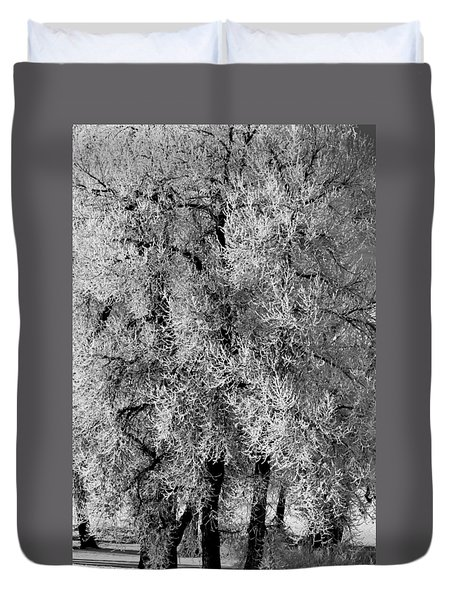 Duvet Cover featuring the photograph Iced Cottonwoods by Colleen Coccia