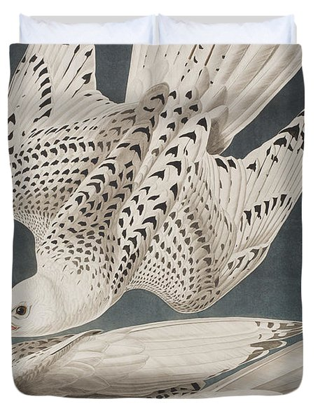 Iceland Falcon Or Jer Falcon Duvet Cover by John James Audubon