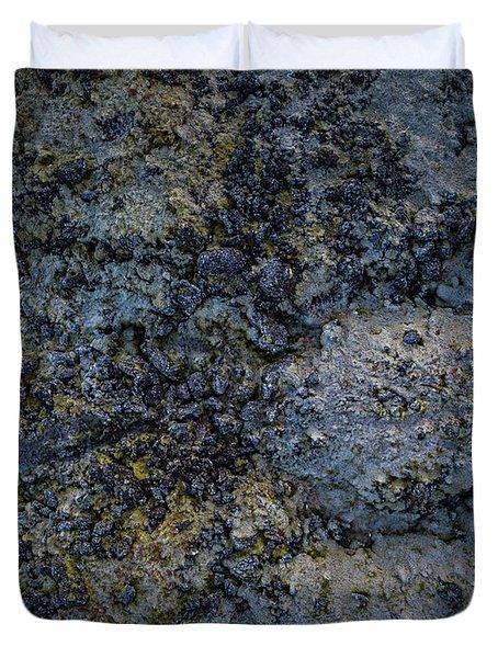 Iceland Lava Field  Duvet Cover