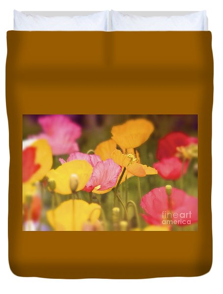 Iceland Poppies Warmly Duvet Cover