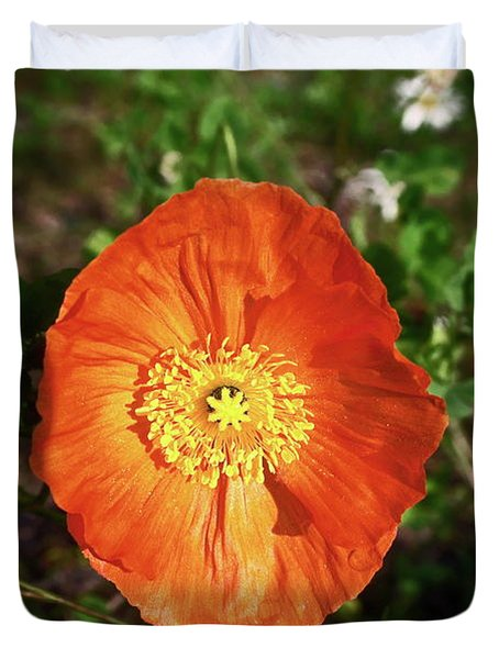 Iceland Poppy Duvet Cover by Sally Weigand