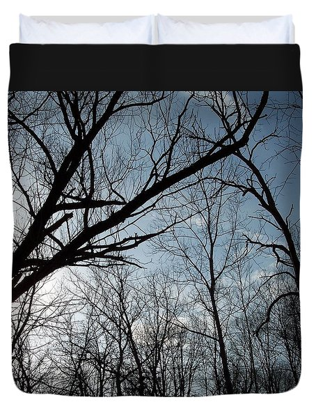 Icy Winter Sky Duvet Cover