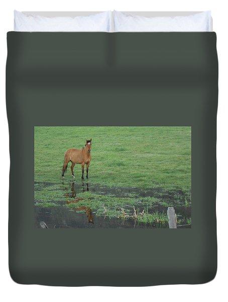 Idaho Farm Horse1 Duvet Cover by Cynthia Powell