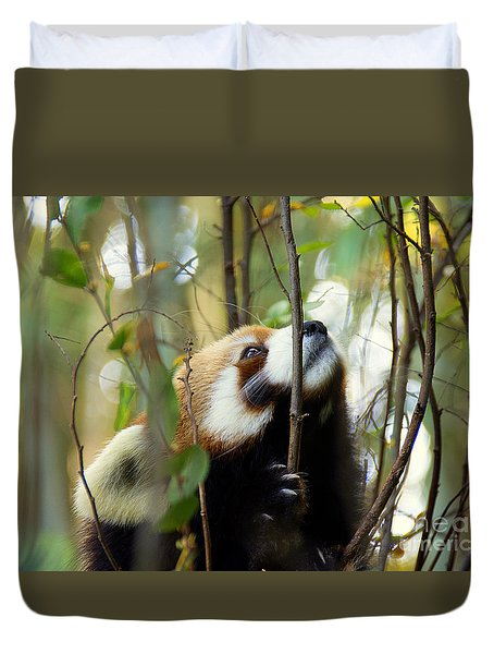 Idgie In A Tree Duvet Cover by Lisa L Silva
