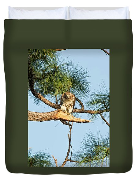 If Looks Could Kill - Hawk Duvet Cover