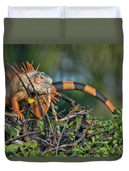 Duvet Cover featuring the photograph Iggy by Don Durfee