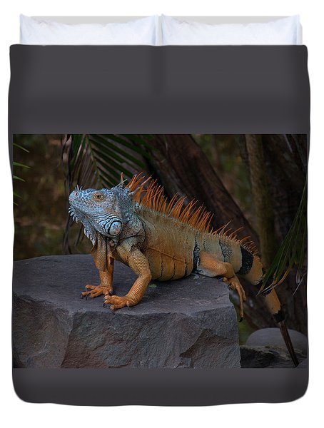 Duvet Cover featuring the photograph Iguana 2 by Jim Walls PhotoArtist